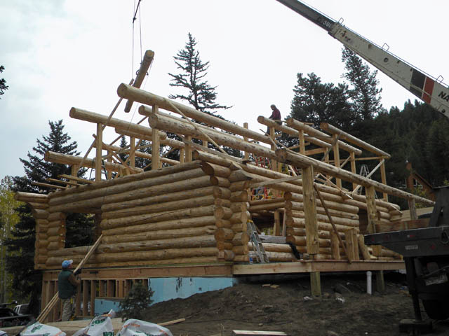 Setting the purlins