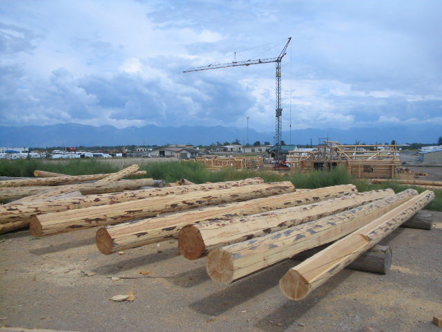 Log Purlins, milled and ready