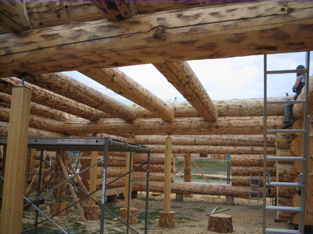 Floor Joists in and capped
