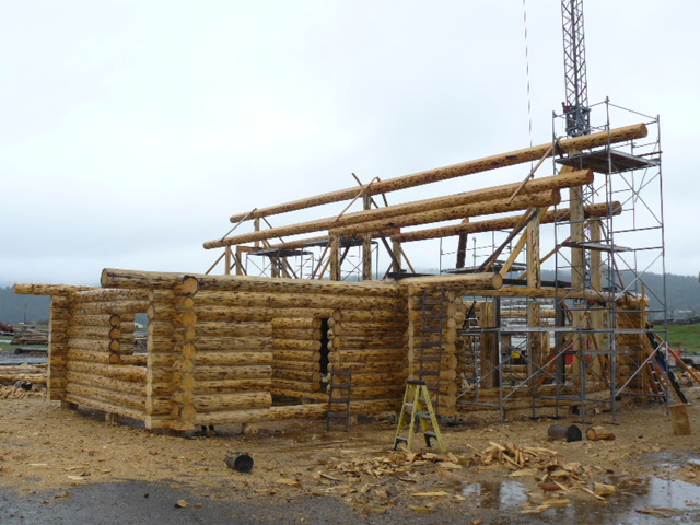 Double purlins for strength