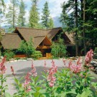 Luxury log home with multiple roof lines set on Swan Lake, mt.