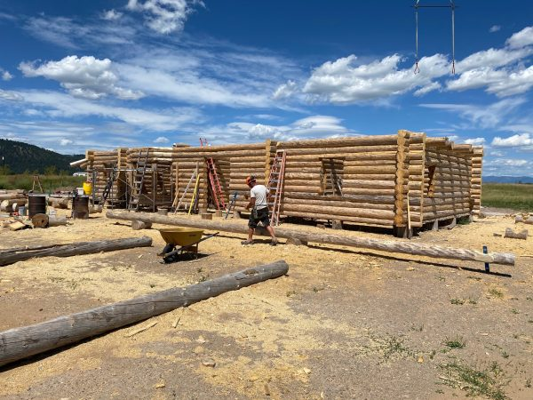 """11""""-12"""" base diameter lodgepole pine are being used in the construction of this handcrafted log home."""